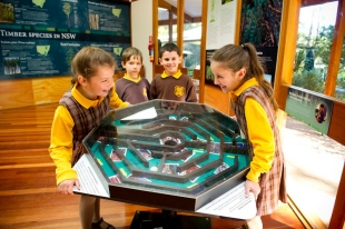 Our Forest Visitor Centre provides an interactive experience the community to learn about sustainable forestry