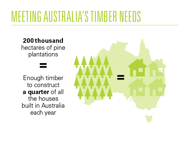 Meeting Australia's timber needs