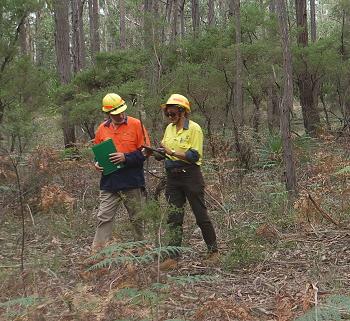Aboriginal cultural heritage surveys