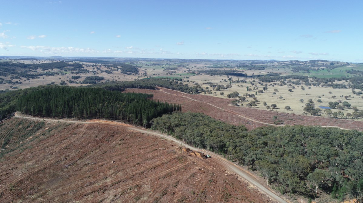 'Kinross_Landscape overview'  § Shows an overview of the landscape, showing harvested pine plantation and the natural forest of Kinross State forest.